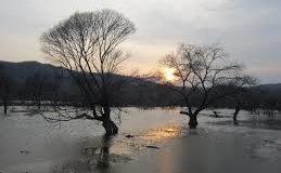 Sognare alluvione: Significato, interpretazione e numeri al lotto