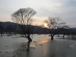 Sognare alluvione