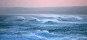 Sognare di nuotare e il mare: significato ?