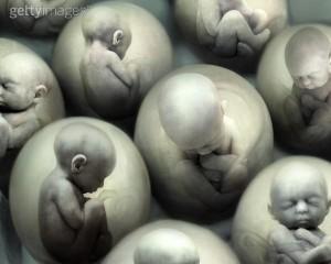 Sognare un Aborto