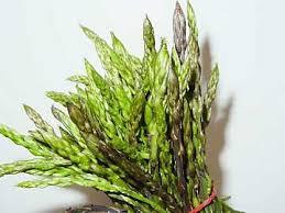 Sognare asparagi