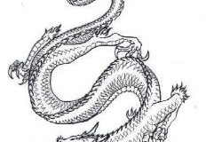 Sognare un drago: significato ed interpretazione