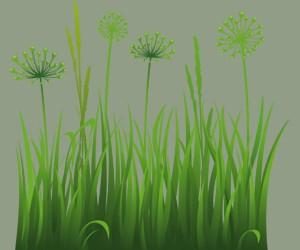 Sognare l'erba