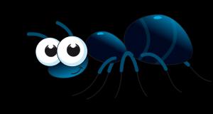 Sognare formiche: cosa significa ?