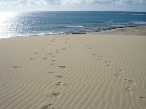 Sognare la sabbia