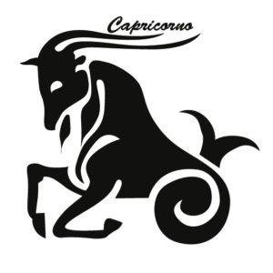 Risultati immagini per capricorno zodiaco