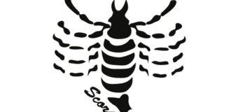 Scorpione Segno Zodiacale