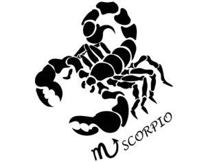 Risultati immagini per scorpione